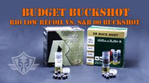 12 gauge buckshot